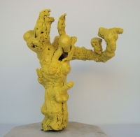 Trau Ma - Yellow Love Tree -